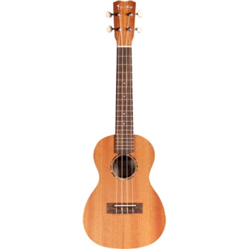 Cordoba U1 Protégé Series Concert Ukulele_Matte Finish Guitar