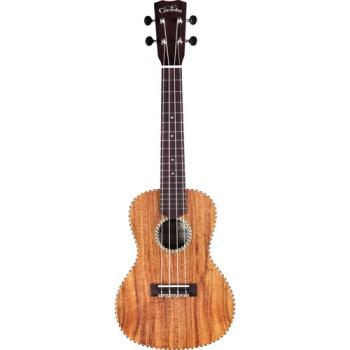 Cordoba 25 Series Concert Ukulele Guitar