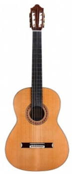 Cordoba Friederich CD Classical Acoustic Guitar