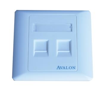 Avalon Dual Port RJ45 Face Plate