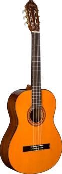 Washburn Classical C5 Nylon String Acoustic Guitar - Natural