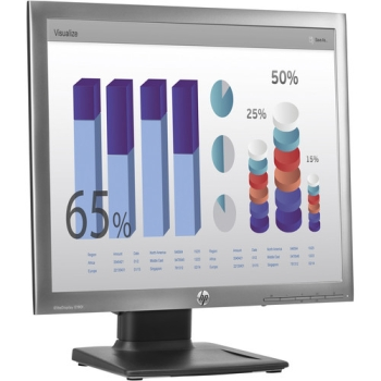 HP EliteDisplay Widescreen LED Backlit IPS Monitor