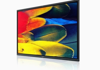 "Maxhub C75FA 75"" Education & Commercial Screen Touchscreen Display"