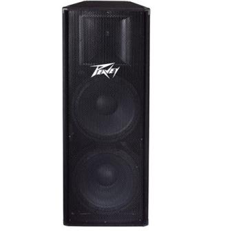 Peavey PV-215 Quasi 3-Way Speaker