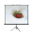 "Anchor 180 x 180 cm 100"" Diagonal 1:1 Aspect Tripod Projector Screen"
