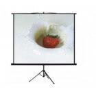 "Anchor 200 x 200 cm 111"" Diagonal 1:1 Aspect Tripod Projector Screen"